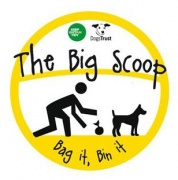 big_scoop_logo_180